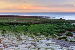 Famouse Etretat beach at low tide on sunset, France Royalty Free Stock Photos
