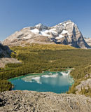 Famouse and Seculed, Lake Ohara. An image from the Yukness Ledges high above the shores of the popular Lake Ohara. In british columbia, canada Royalty Free Stock Photos