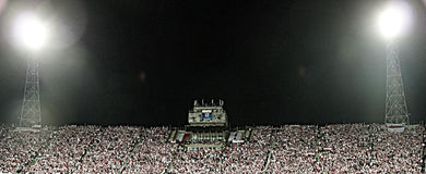 Fanáticos del fútbol Fotos de archivo libres de regalías