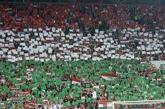 Fanáticos del fútbol húngaros Foto de archivo libre de regalías