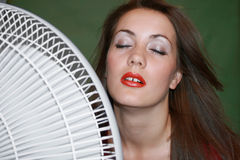 Fan Stock Photos