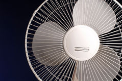 fan Obrazy Stock