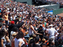 Fan arrested at Giants game. Unruly fan detained by SFPD at a San Francisco Giants game in the bleacher section as other fans watch the drama unravel. Taken on Royalty Free Stock Images