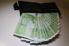 Fan av hundra sedlar i en handväskaevrovye Arkivfoton