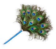 Peacock feather fan. Fan with beautiful peacock feathers isolated over white Royalty Free Stock Photo