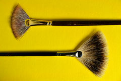 Fan brushes Stock Photography