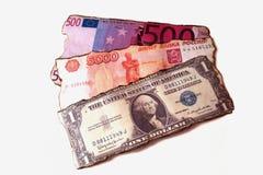 Fan carbonizada de los billetes de banco aislada Fotografía de archivo