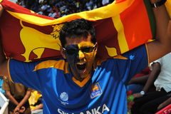 Fan celebrates at World Cup Match Royalty Free Stock Images