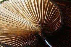 Fan de hoja de palma Imagenes de archivo