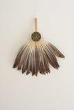 Fan de la pluma del ganso Imagen de archivo libre de regalías