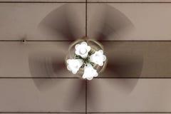 Fan de techo de cobre amarillo en el movimiento radial fotografía de archivo libre de regalías
