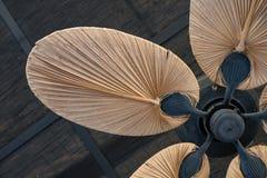 Fan de techo de madera tropical Fotos de archivo