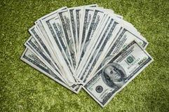 Fan dei soldi su erba Immagine Stock