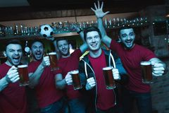 Fan di sport che celebrano e che incoraggiano davanti alla birra bevente della TV alla barra di sport immagini stock