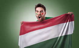 Fan holding the flag of Hungary Stock Images