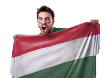 Fan holding the flag of Hungary Stock Photo