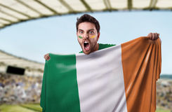 Fan holding the flag of Ireland Stock Photography