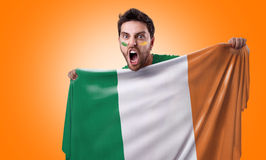 Fan holding the flag of Ireland Royalty Free Stock Photos