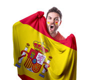 Fan holding the flag of Spain on white background Royalty Free Stock Photo