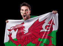 Fan holding the flag of Wales Royalty Free Stock Photo