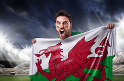 Fan holding the flag of Wales Stock Photo