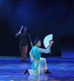 Fan Kung Fu-The tana dramat legenda kondorów bohaterzy Obraz Stock