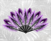 Fan made of beautiful feathers. Stock Photos