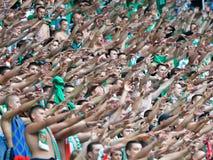 Fan piłki nożnej. Zdjęcie Stock