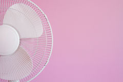 Fan on Pink Royalty Free Stock Photo