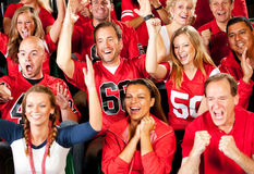 Fan: Team Scores Touchdown ed acclamazione di fan Fotografia Stock Libera da Diritti