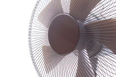 Fan Royalty Free Stock Image