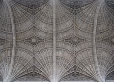 Fan webbing on the ceiling of Christ`s College Chapel, Cambridge, England stock photo