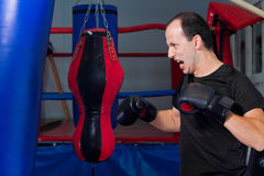 Fanatic boxer. Punching a sand bag Royalty Free Stock Photos