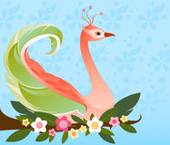 Fanciful Feathers Royalty Free Stock Images