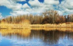 Fancsika jezioro w Debrecen Fotografia Royalty Free