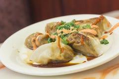 Fancy Asian Dumplings Royalty Free Stock Image