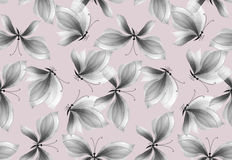 Fancy black and white butterfly seamless pattern. Hand drawn illustration. watercolor artwork Royalty Free Stock Image