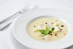 Fancy Bowl of Soup stock images