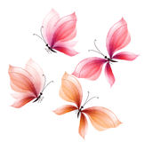 Fancy butterfly design elements set. hand drawn illustration. Watercolor artwork Stock Images