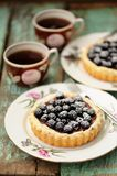Fancy cake with blackberries and chocolate cream with icing sugar Royalty Free Stock Photos