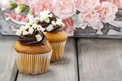Fancy chocolate cupcakes on wooden table. Pink carnation flowers in the background Royalty Free Stock Images