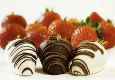 Fancy chocolate dipped strawberry Stock Images