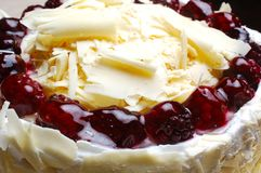 Fancy Cream Cake. Fancy cake detail with cherries and cream Stock Image