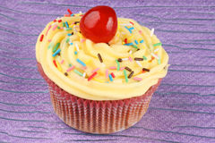Fancy cupcake with candied cherry Stock Images