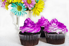 Fancy Cupcakes Stock Photography