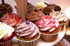 Fancy Cupcakes Stock Image