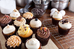 Fancy Cupcakes Frosted Stock Images