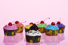 Fancy Cupcakes on Pink Stock Image