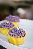 Fancy cupcakes Royalty Free Stock Photos