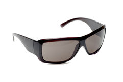 Fancy dark brown sunglasses. White isolated Royalty Free Stock Photography